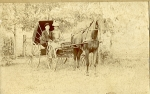Newton Allen and Genevieve G.(Hills) Barger carriage ride.