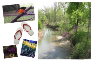 SB March 21 2011 Springtime! Flip Flops! All Rights Reserved (c)DiamondsnSpurs2011